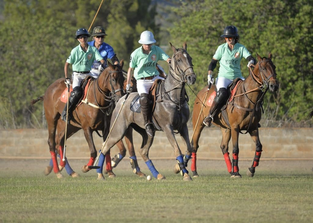picture of four polo horses during a game,