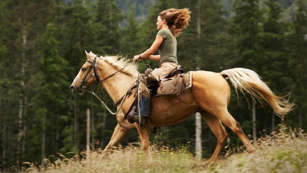 picture of a woman riding a palomino horse,