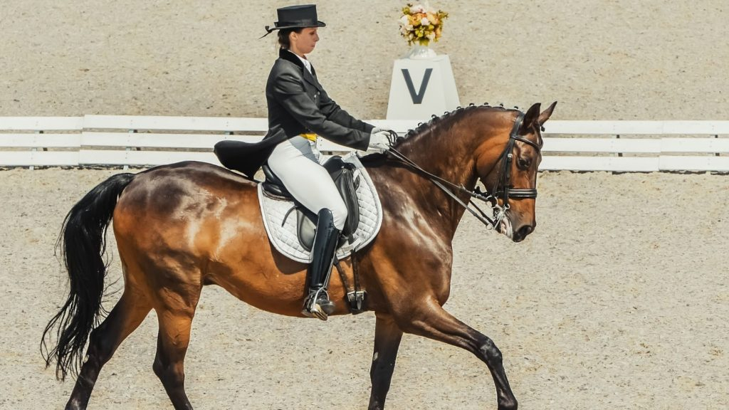 Picture of a woman riding a horse in a dressage competition.