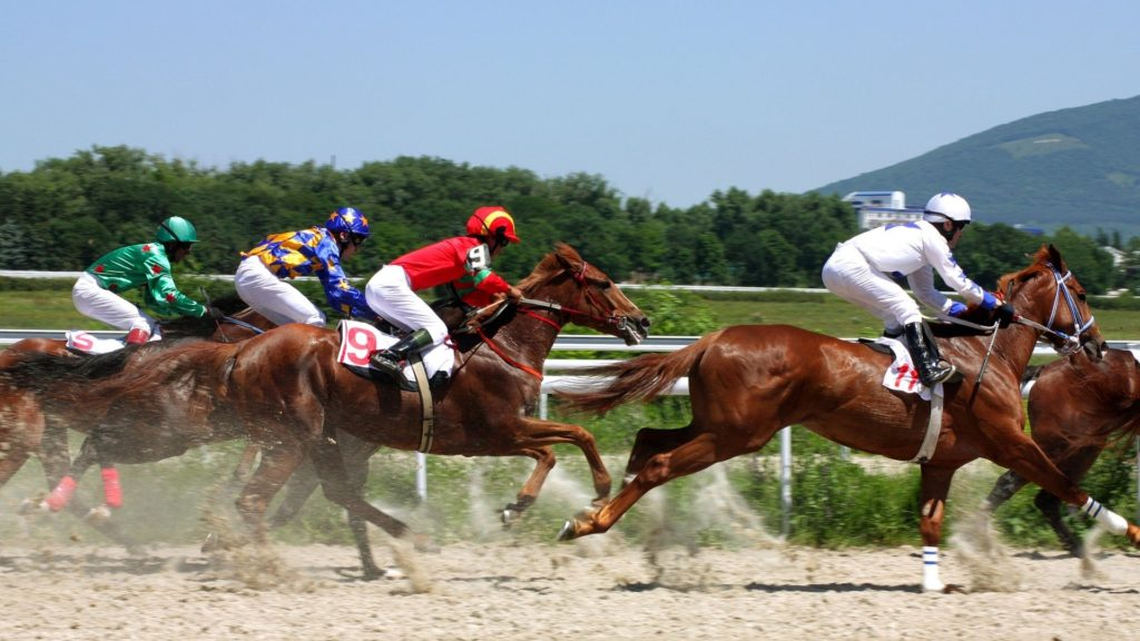 Picture of horses racing on a flat-track.