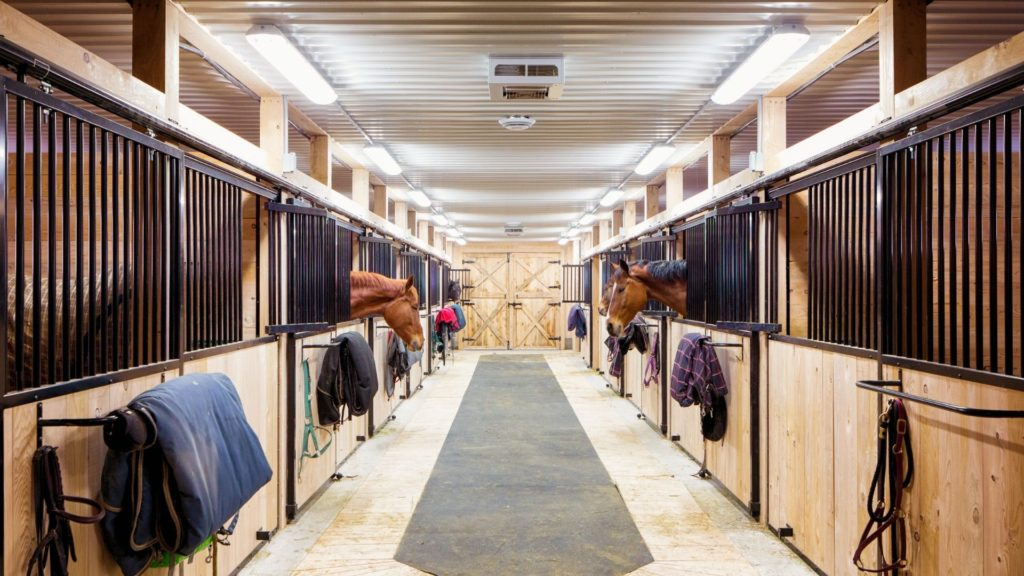 Picture of horses boarded in a barn.