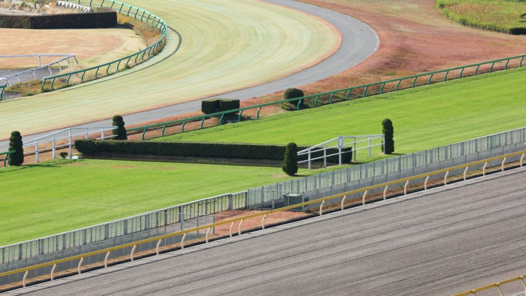 Picture of courses for both steeplechase and flat track horse racing.