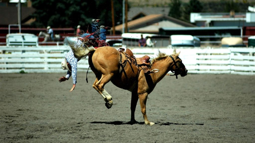 Picture of a person being bucked off his horse.
