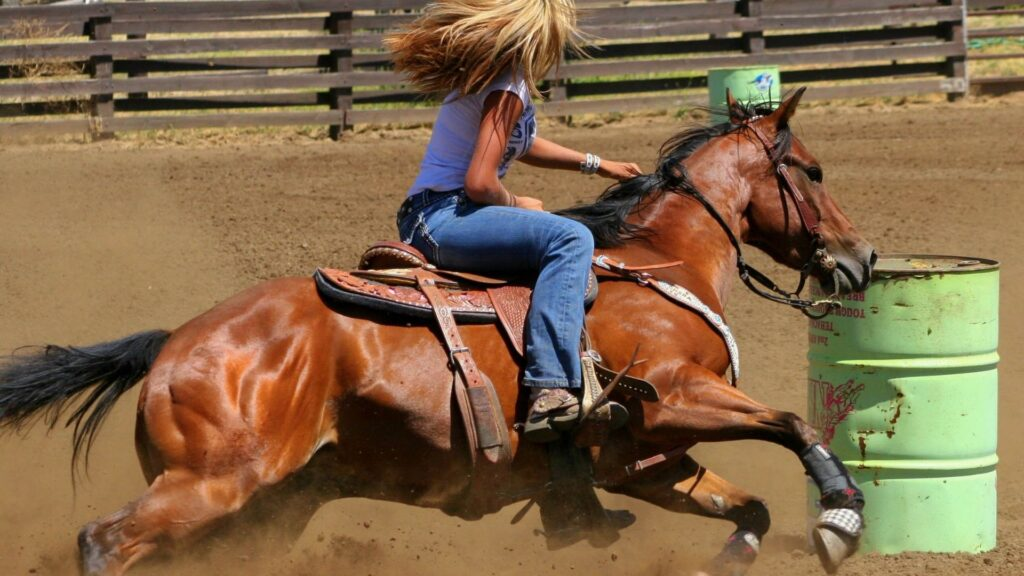 Picture of a woman riding a horse in a barrel race wearing jeans,