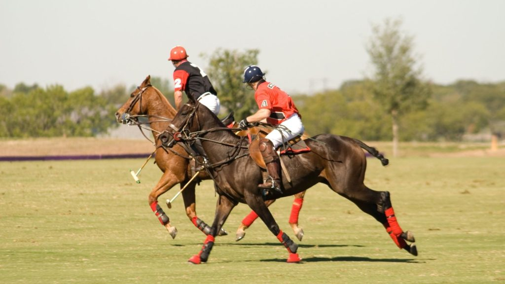 Picture of polo players during a match,