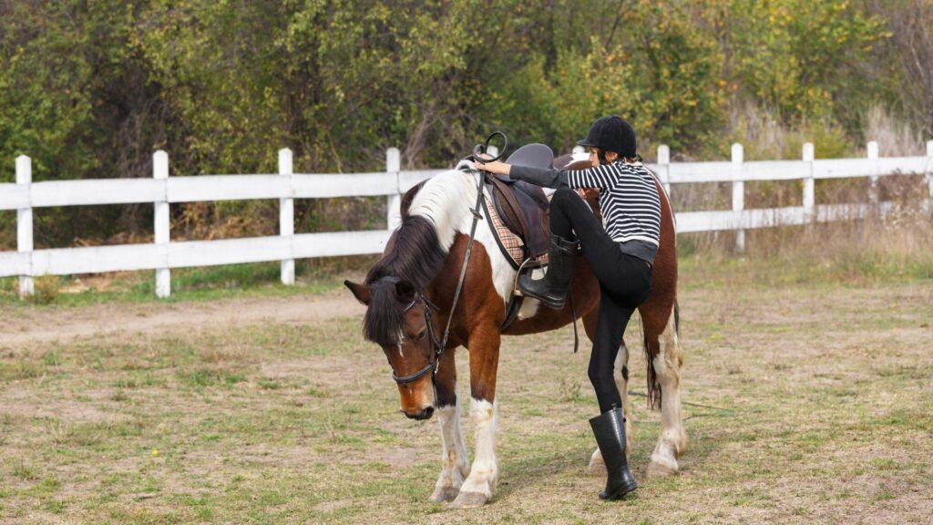 Picture of a woman mounting a horse with flexible riding pants,