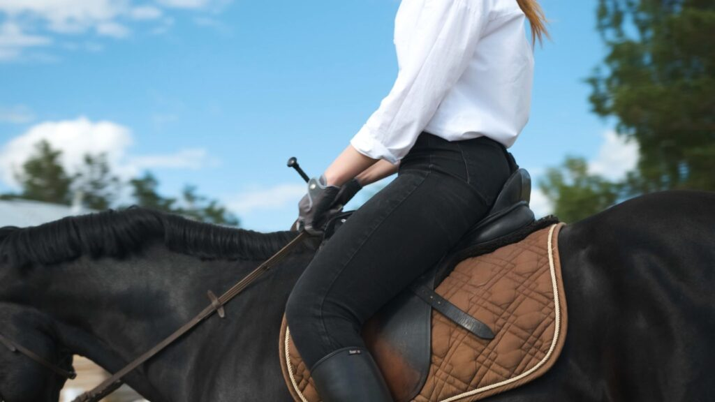 Picture of a woman riding a horse in riding pants,