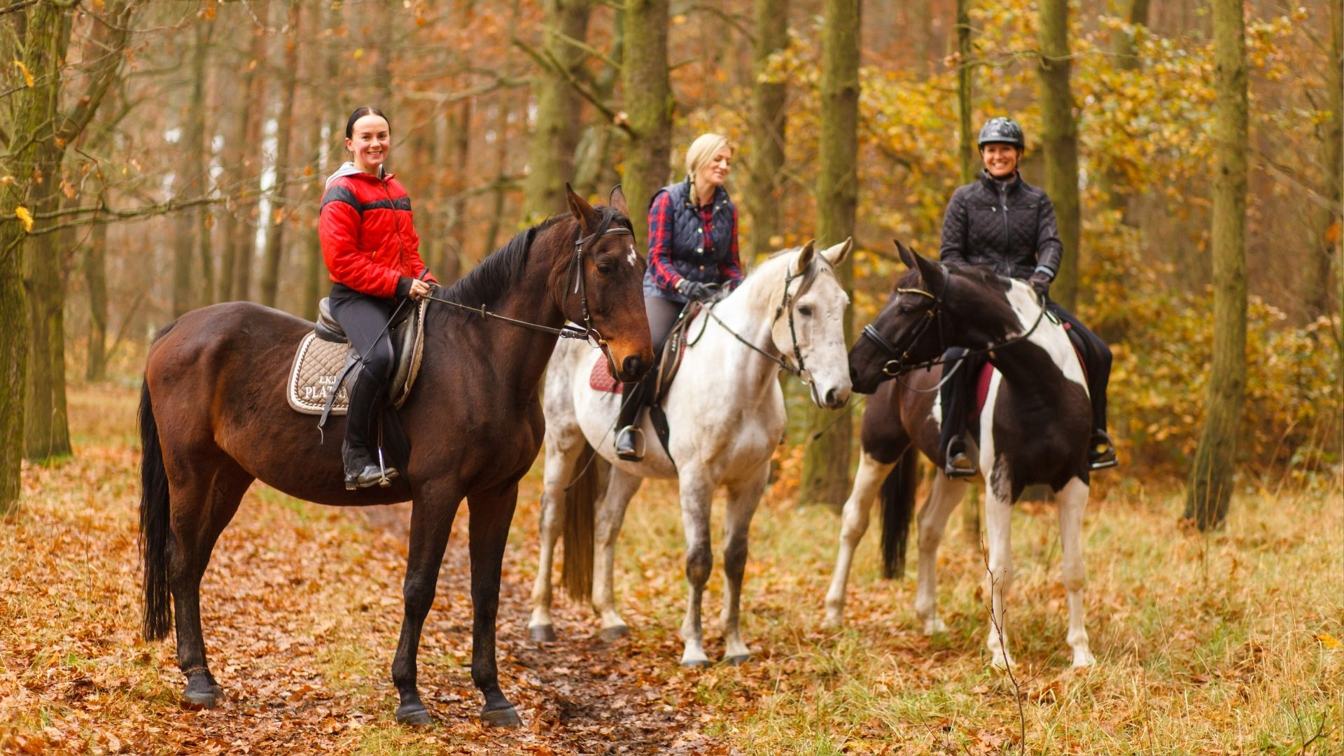 Picture of horseback riders.