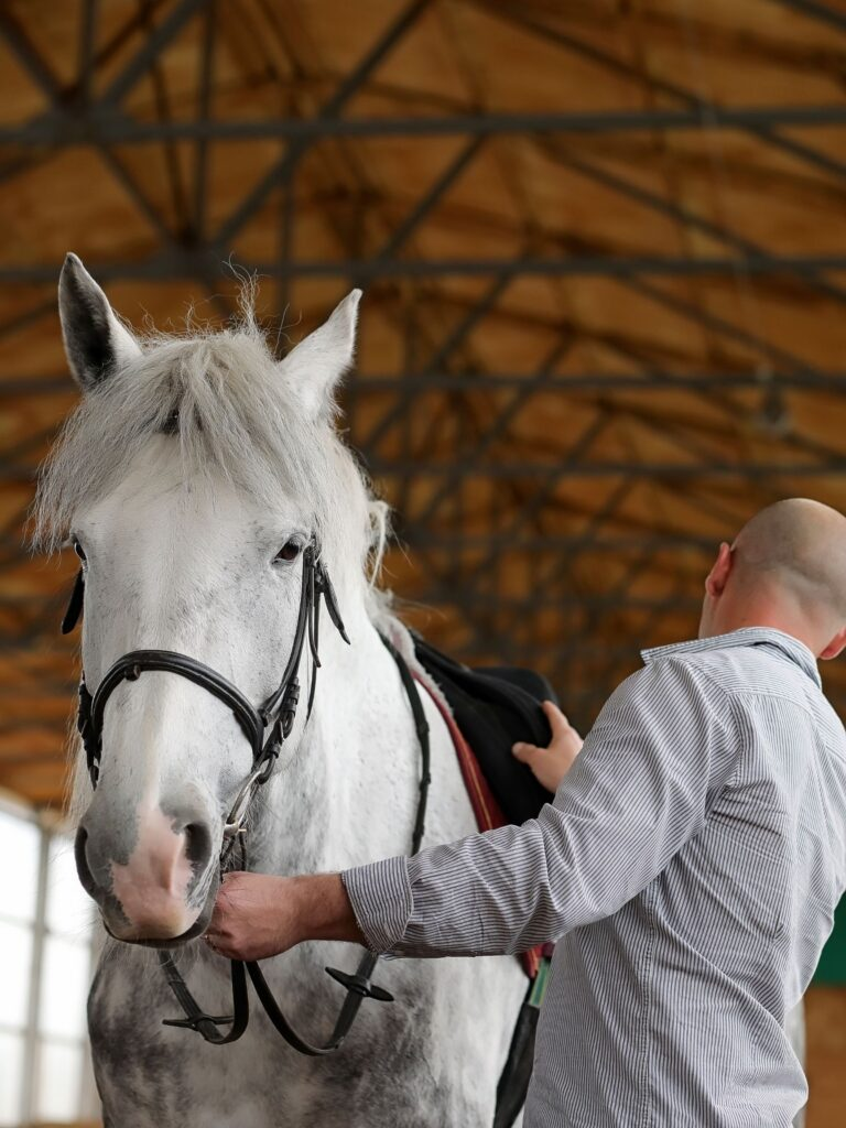 Trainer establishing roles with his horse.