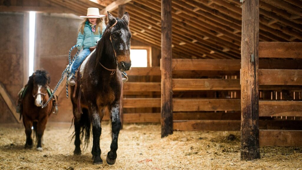 Picture of a girl riding a horse in a barn that is well lit.