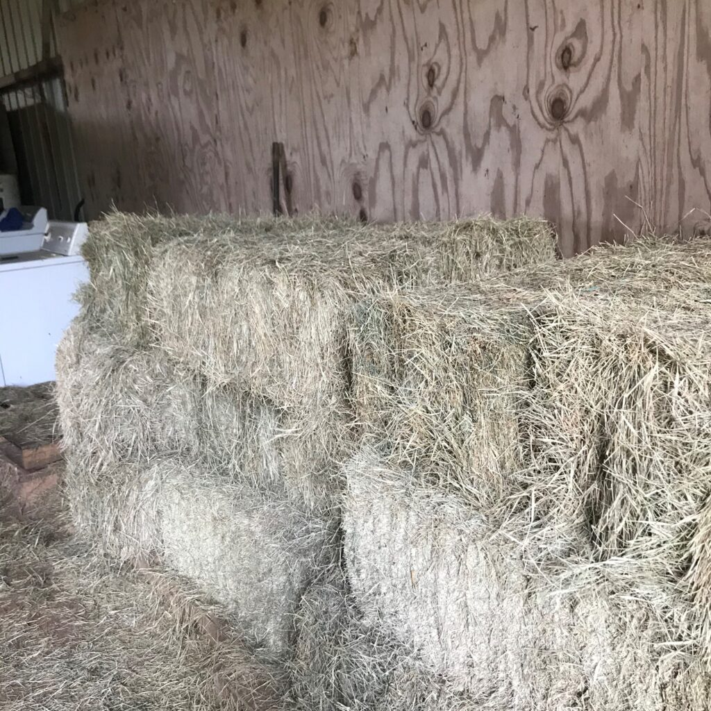 Picture of square bales of hay.