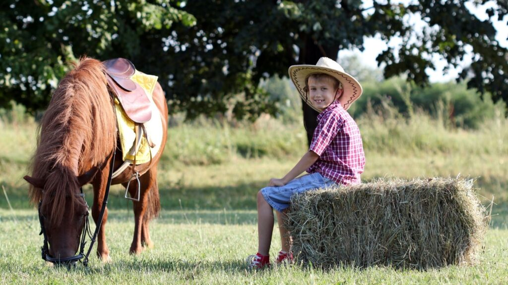 Picture of a boy sitting on a bale of horse hay.