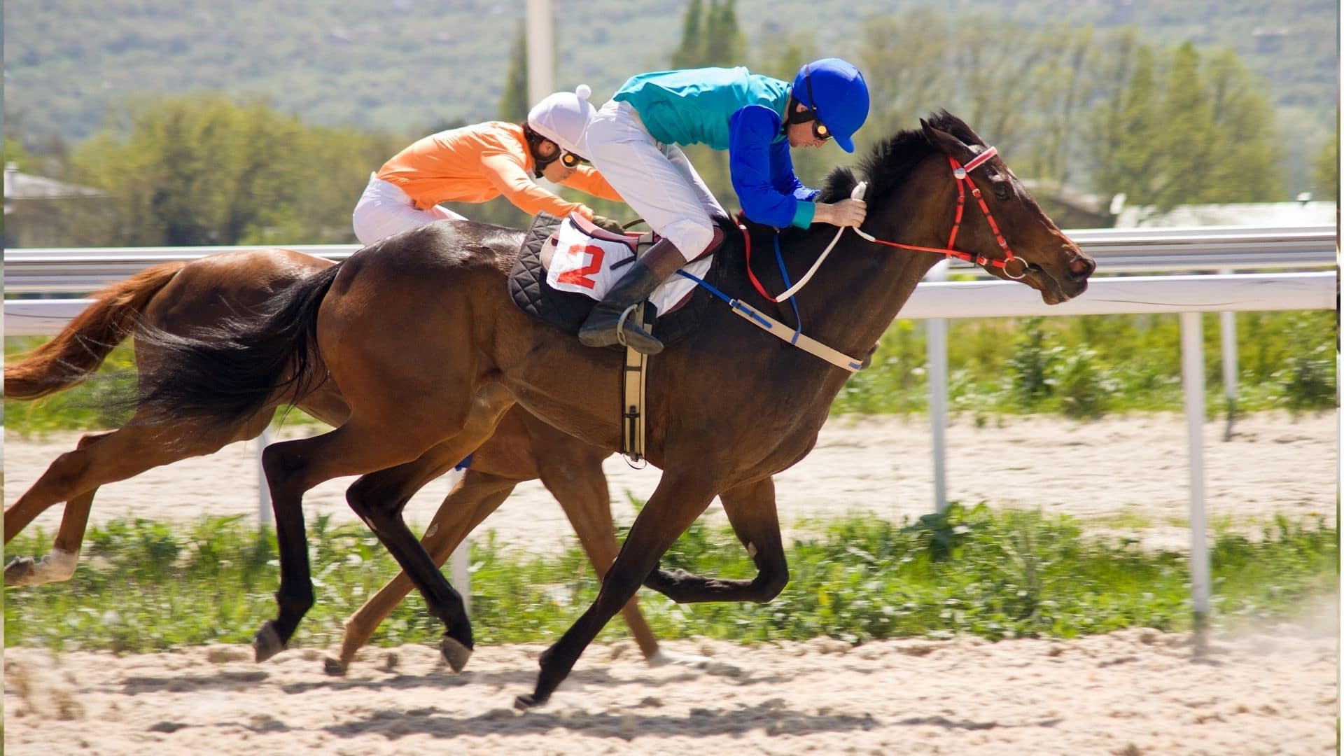 Picture of two racehorses racing down a dirt track.