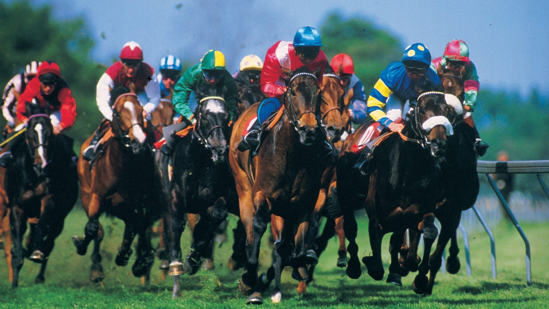 Picture of horses during a race.