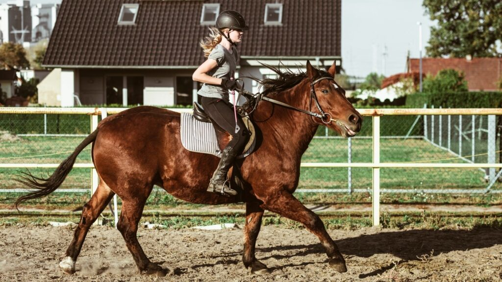 Picture of a girl riding a horse.