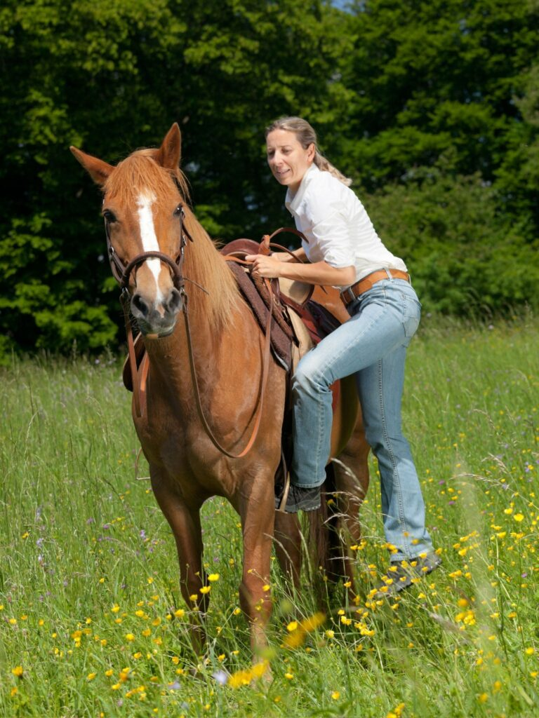 Picture of a woman mounting a horse.