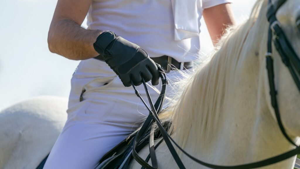 Picture of a horse rider holding reins.