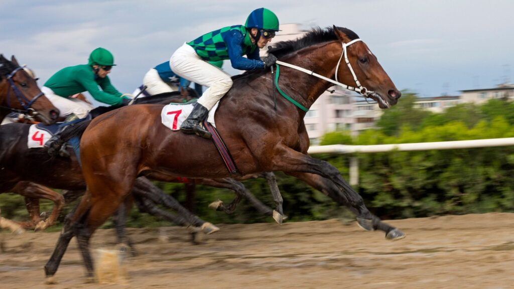Picture of a racehorse running in a race.