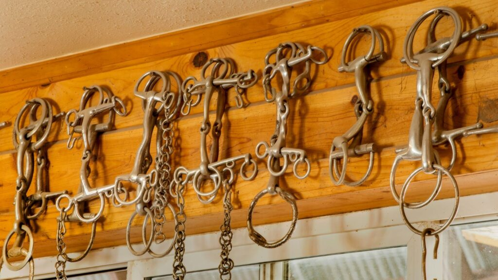 Picture of different types of snaffle bits for horses.