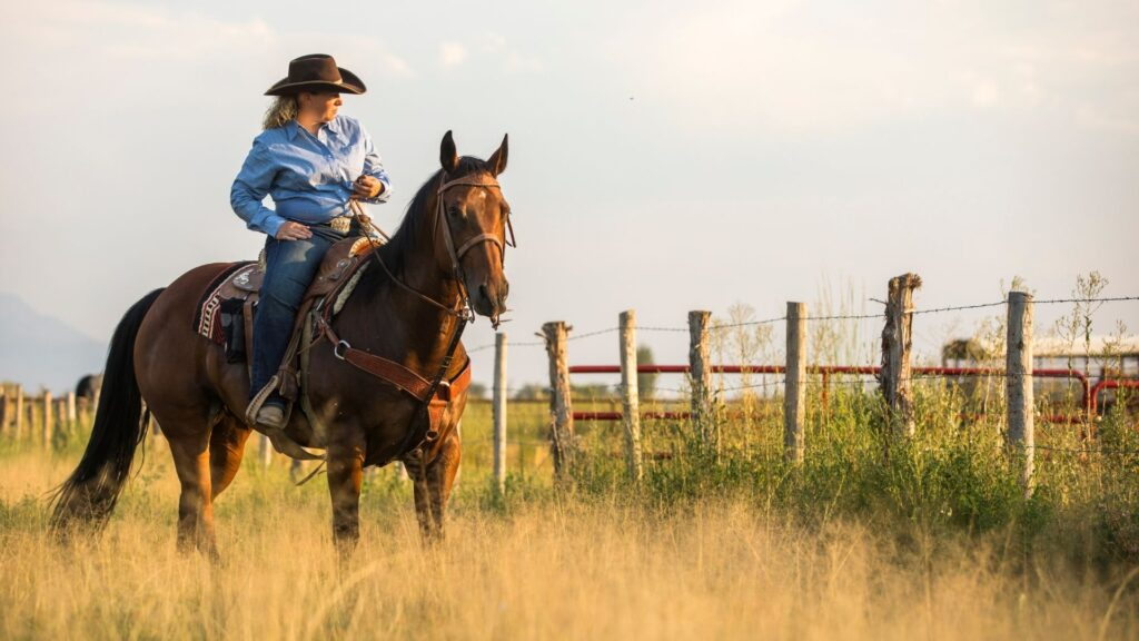 Picture of a woman riding a horse and wearing jeans.
