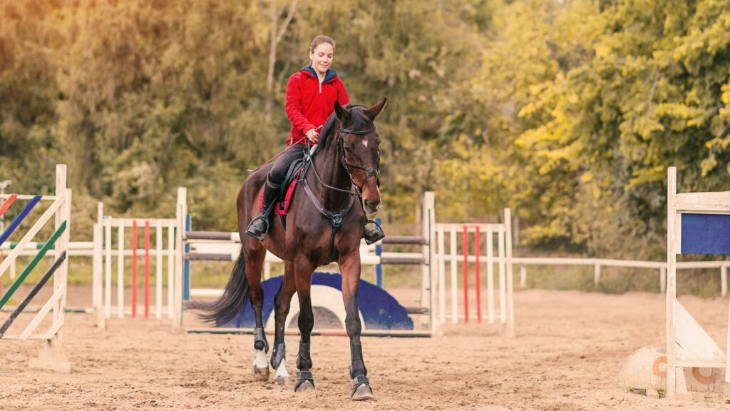 Picture of a girl working on horse riding commands.