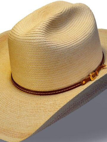 Picture of a straw cowboy hat.