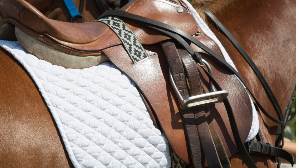 Picture of an English treeless saddle