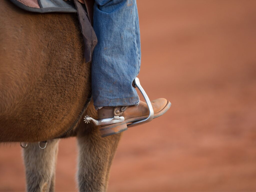 Picture of a cowboy boot in a stirrup.