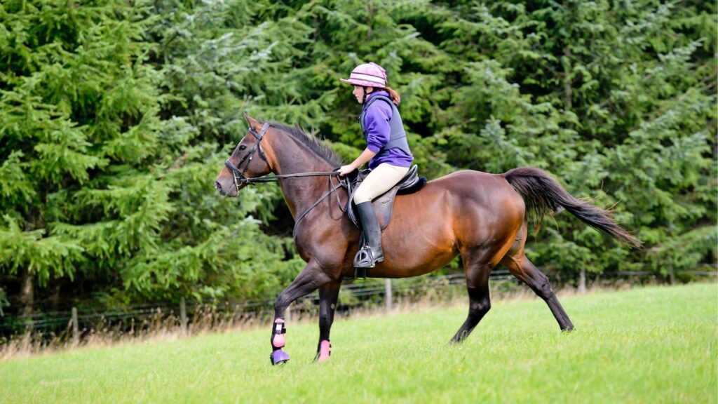 Picture of a girl riding in horse riding breeches